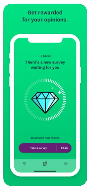 SurveyMonkey how much can you make.